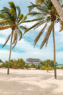 yucatan beach landscape