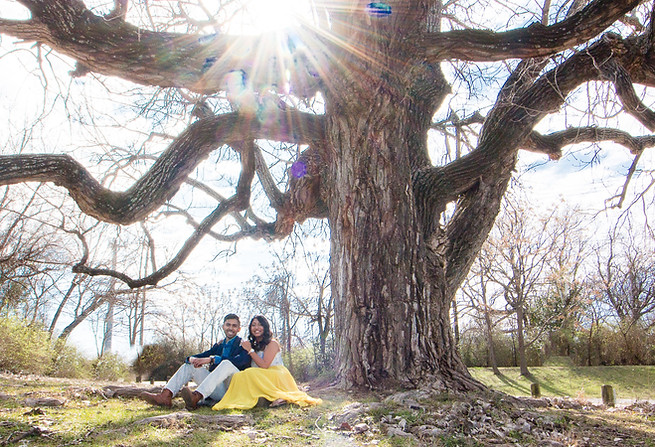wide angle tree engagement