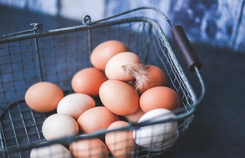 Milwaukee & Waukesha Farm Fresh Eggs | Free Range Chickens
