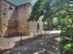 Alamo-006