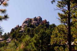 Mt.+Rushmore+028