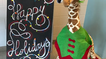 🍎 Gerald the Giraffe Says....