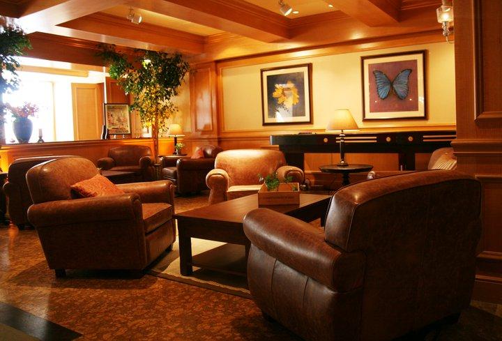 Brown Club Chairs
