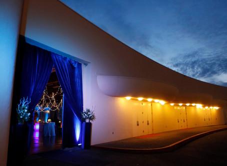 "Elegant ""Frozen"" style Gala Event"