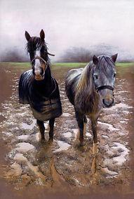 Ponies in mud