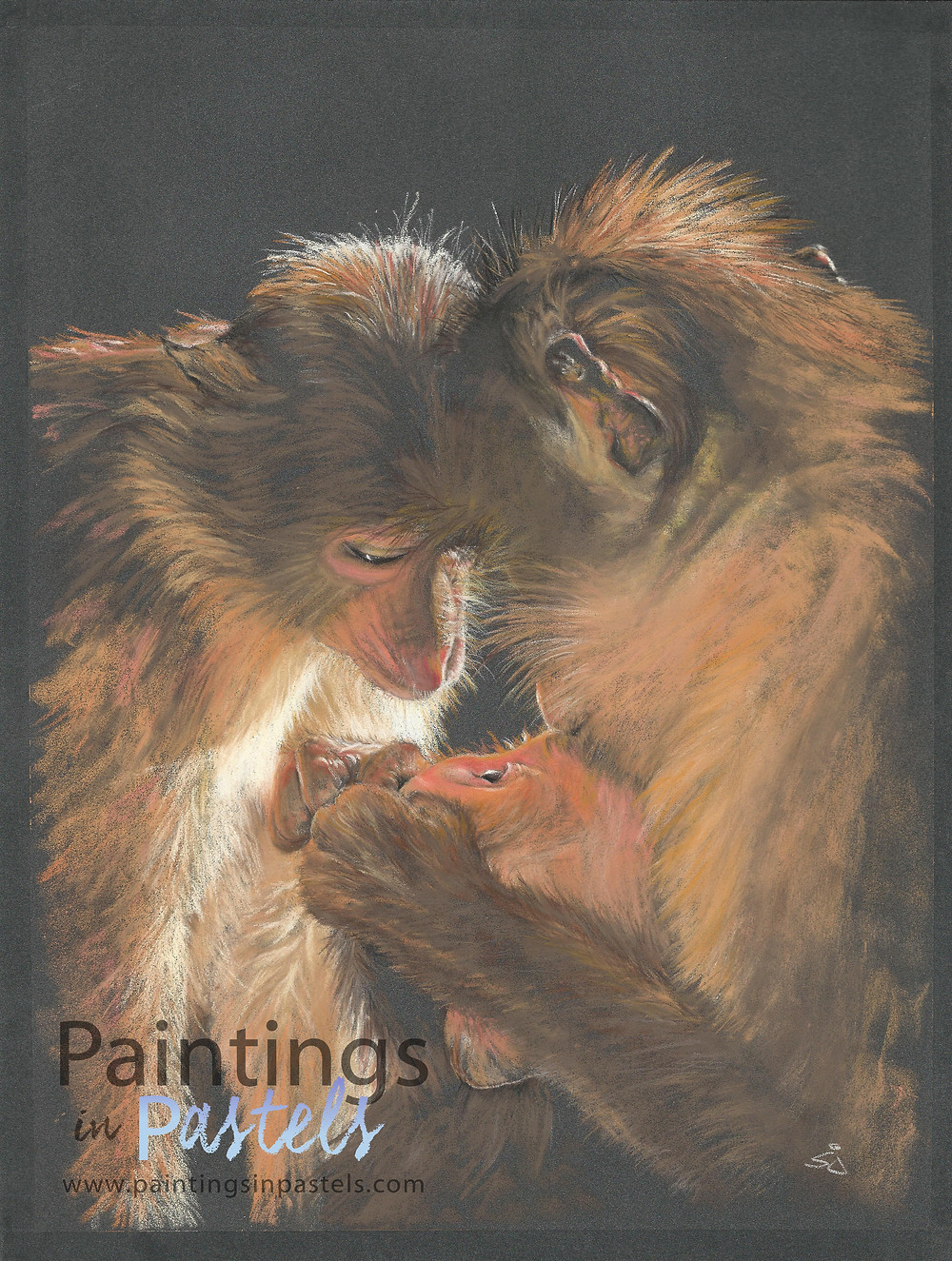 Family of Gibbons painted in pastels