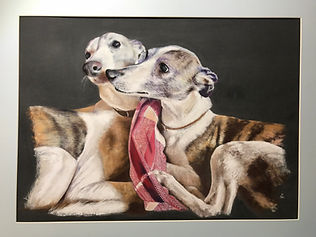 Whippets pastel painting