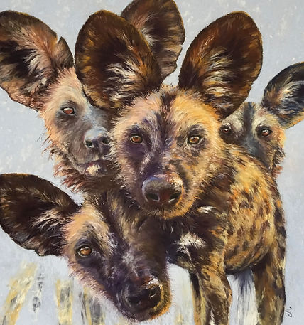 Pastel painting of four African wild dogs looking at the viewer close up