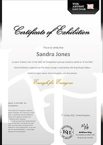 Certificate of semi finalist and Online