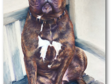 'Rocky Bruiser' the finished painting