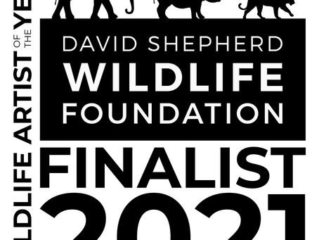 DSWF Wildlife Artist of the Year Finalist!