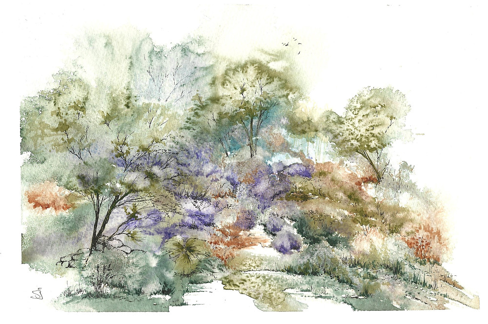 Landscape painted in Pen and Wash