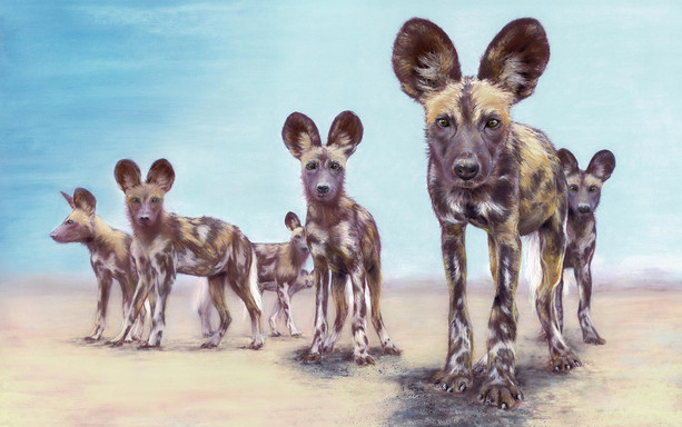 Painted dogs 2