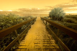 Sanibel Boardwalk