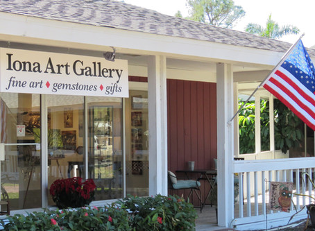 I Own A Art Gallery!!!