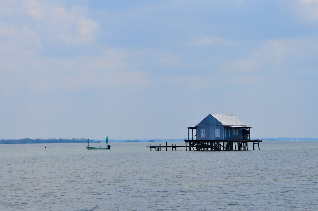 Grey Fish House