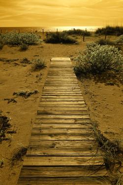 Captiva Boardwalk