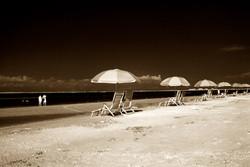 Pink Shell Beach