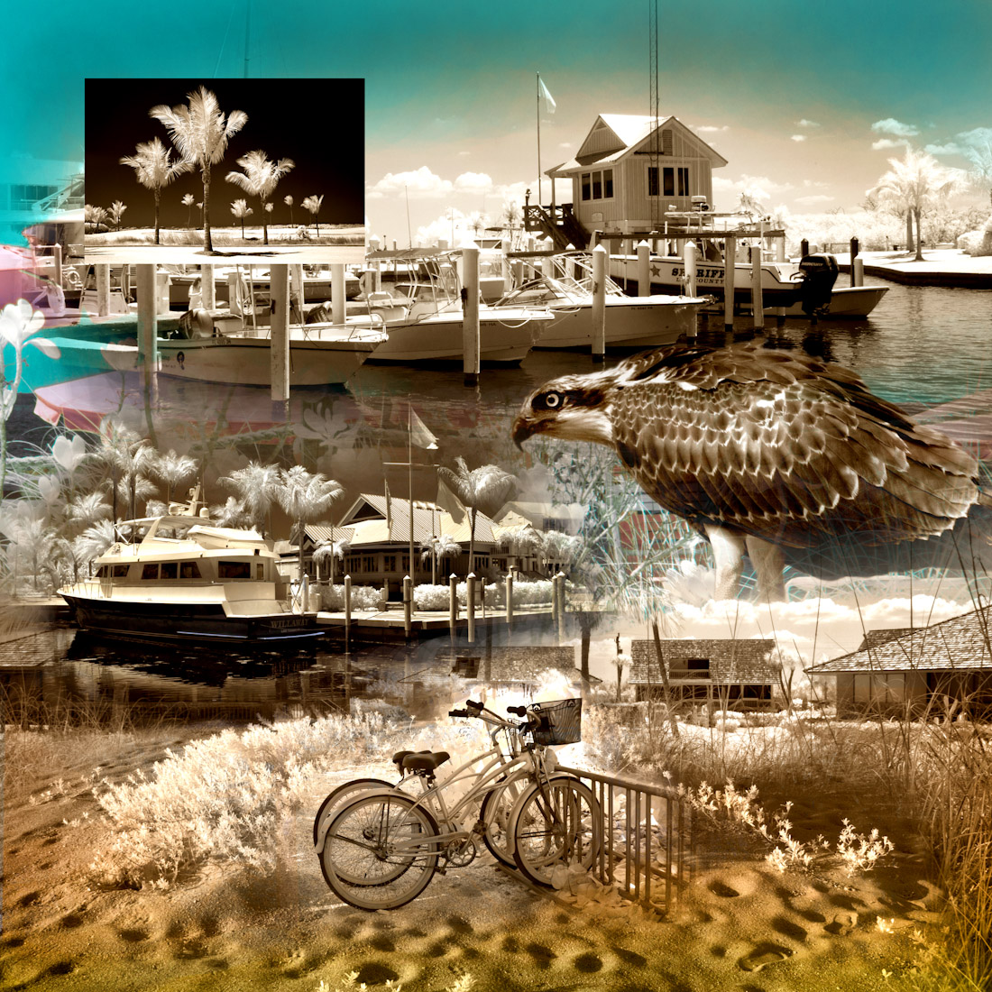 Southseas Collage