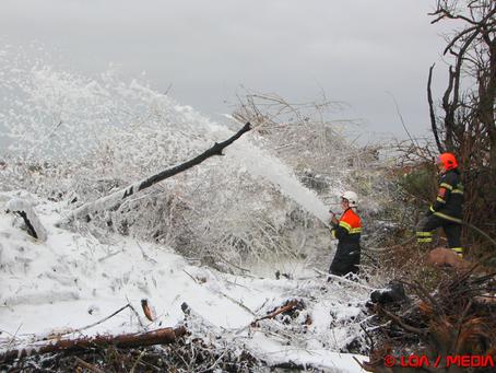 Påsat naturbrand ved Tappernøje