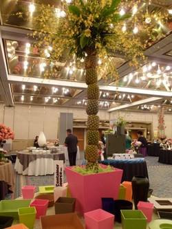 AIFD Symposium 2012