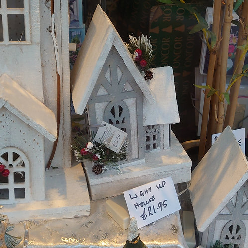 Light up house (approx 25cm)