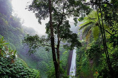 waterfall-384663_1920.jpg