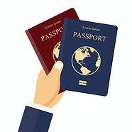 pasaportes-rojos-azules-mano_1325-723.jp
