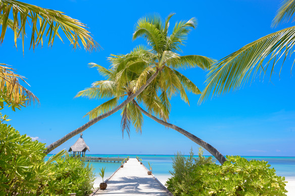Playas Madagascar
