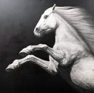 Horse #09