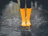 温岛今明两天需严防暴雨强风