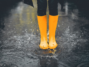 Things to do around us when it rains...