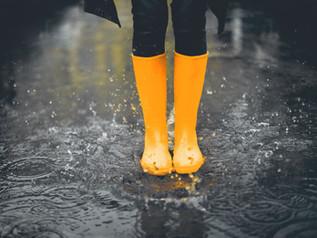 今日はずっと雨ですね 占いハウス曼荼羅屋