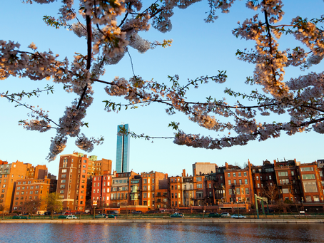 3 Things You Can Do When Finding An Apartment in Boston During Covid
