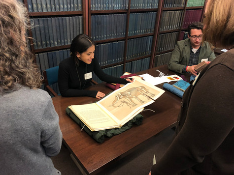 Hands-on Public Events in the Archives