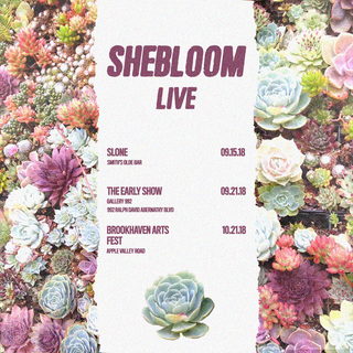 Final shows 2.png