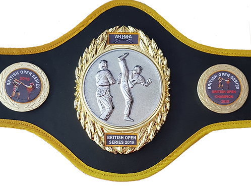 Kickboxing Title Belt