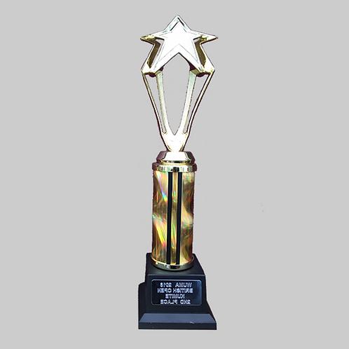 "12"" Trophy"
