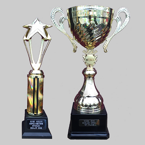 """Gold Cup with Handles 100mm, 12"""" Trophy Set"""