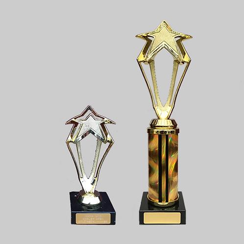 "10"" & 6"" Trophy Set"