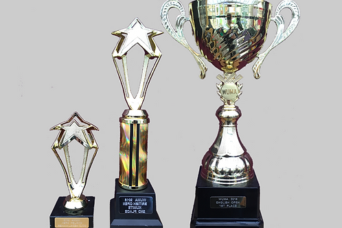 "Gold Cup with Handles 100mm, 12"", 6"" Trophy Set"