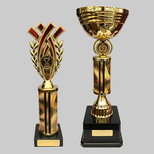 "Gold Cup 100mm & 10"" Trophy Set"