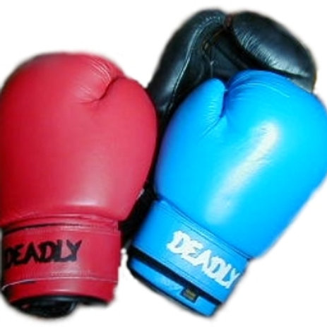 LOT 10 - 6 X Leather Boxing Gloves