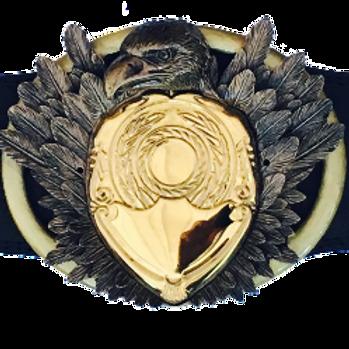Standard Eagle Belt