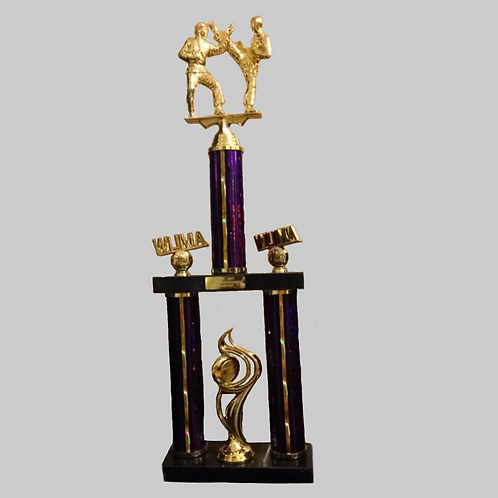 2 Foot Two-Into-One Trophy