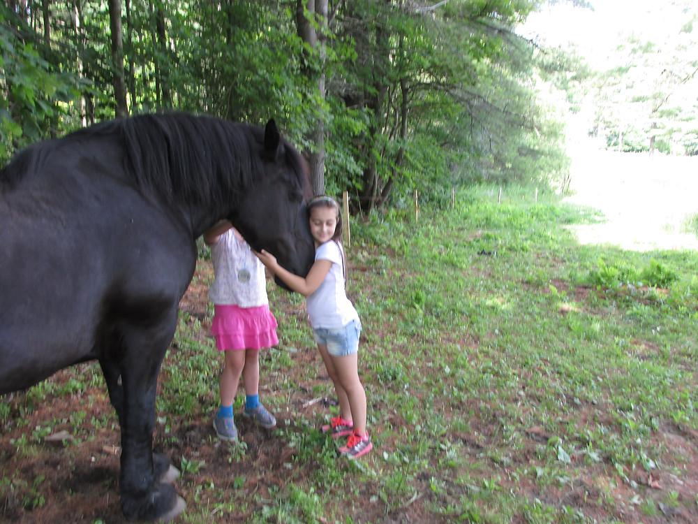 Horse Sense at Camp