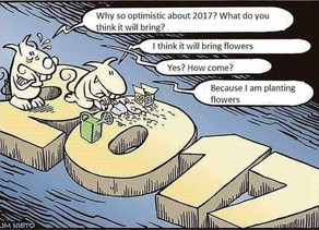 Gathering the Flowers of 2017
