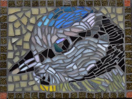 Sue Latchford Mosaics