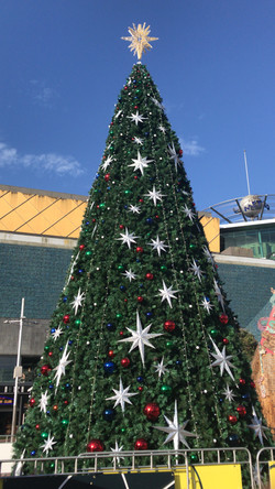 Christmas Tree Aotea Square