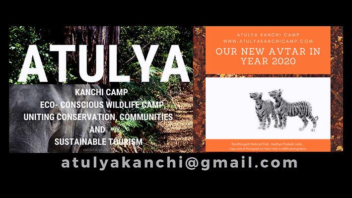 Atulya Kanchi Camp, Bandhavgarh National